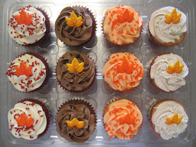 Fall Dozen Cupcake Assortment